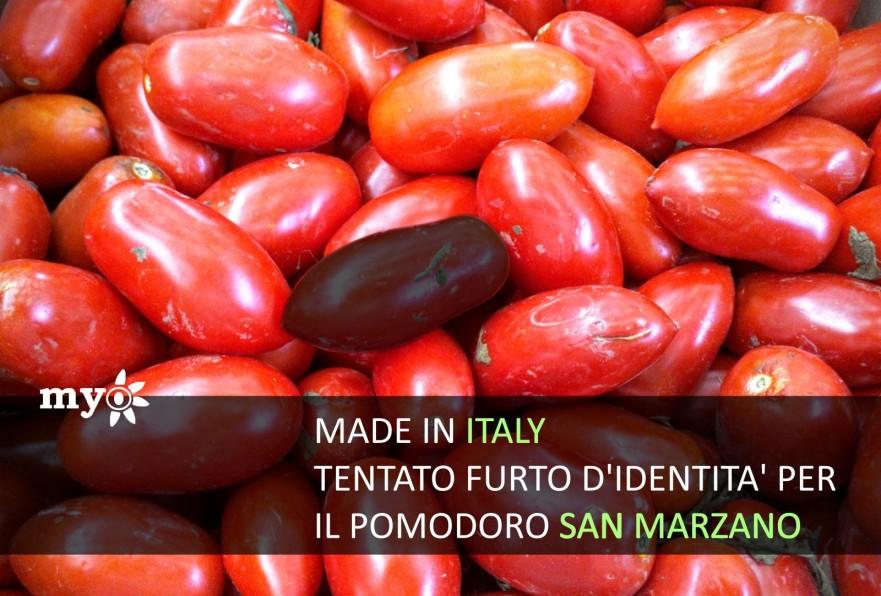 imitazioni di pomodo san marzano attacco al made in italy