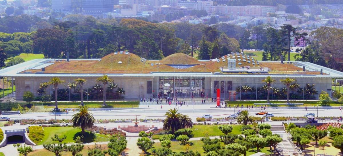 tetti-verdi-erbosi-green-roofs-agricoltura-ed-efficienza-energetica
