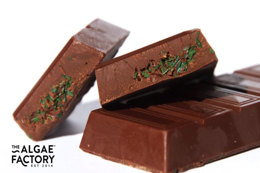 barrette di cioccolato ed alghe