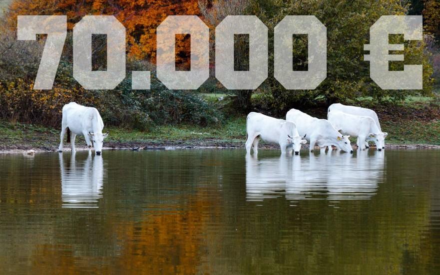 Contributo ISMEA 70000 euro per giovani agricoltori